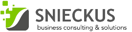 银顶灰 公司  - Snieckus Business Consulting & Solutions